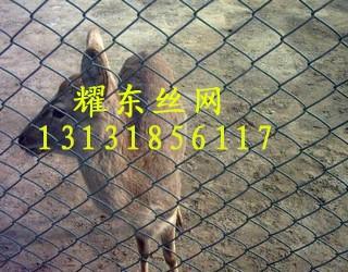 养殖围栏网01.jpg