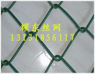<a href='http://www.apyaodong.com' target='_blank'>PVC勾花网</a>02.jpg