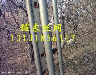 勾花<a href='http://www.apyaodong.com' target='_blank'>护栏网</a>02.jpg